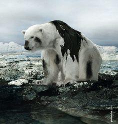 Kampagne: Arctic Defender — Agentur: planetsisa — Kunde: Greenpeace in Zentral- und Osteuropa — Jetzt noch mehr Kampagnen pur im Fischer`s Archiv! www.fischersarchiv.de