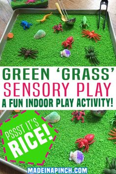 Sensory play naturally encourages learning and the use of scientific processes through hands-on activities that stimulate your child's senses. Sensory play: green 'grass'…a new and different take on indoor sensory play! This activity is fun for all ages (except for babies who are likely to put the rice in their mouths)! | Made in A Pinch @madeinapinch #sensoryplay #funkidsactivites #athomefunforkids #sensoryriceplay #sensoryplayathome #ricesensensoryplay #kidsactivites #madeinapinch