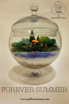 Keep the summer sunshine in a jar with a Puff Terrariums.  www.puffterrariums.com