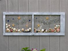 Under the Sea..Sea shells, Beach Glass and Starfish by SeasidesbyDesign on Etsy