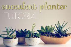 tuTORIal: DIY Succulent Planter