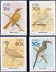 South West Africa 1988 Birds Set Fine Mint SG 499 502 Scott 606 9 Condition Fine MNHOnly one post charge applied on multipule purchases South African Birds, Himba People, World Birds, Postage Stamp Art, Vintage Stamps, African History, West Africa, Stamp Collecting, Science Nature