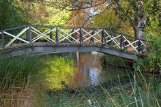 Autumn Colours, Mona Vale, Christchurch