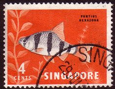 Singapore 1962 National Day Tiger Fish Fine Used SG 65 Scott 54 Other Asian and British Commonwealth Stamps HERE!