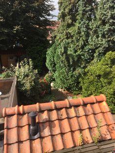 Tuin vanaf balkon /  #tekoop #woonhuis jaren dertig, met veel verrassingen als: ruime zolder mogelijkheid van twee(!) slaapkamers, eerste verdieping drie slaampkamers, badkamer en separaat toilet, beneden hal, woonkamer met erker, keuken, toilet, douche, ruime tuin, twee schuren, (1 steen) veranda en tuinhuis, naast huis eigen 'gang', volledig dubbl glas, vloerverwarming etc ect €169.500,00  http://www.funda.nl/koop/hengelo/huis-49514293-aleidastraat-25/ #Hengelo #Overijssel #Twente #centrum…