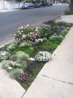 88 Beautiful Rain Crops You Must Plant In Your Home Garden 620 Eco Garden, Rain Garden, Dream Garden, Lawn And Garden, Home And Garden, Garden Ideas, Garden Verge Ideas, Sidewalk Landscaping, Landscaping With Rocks