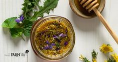 Spring Tonic Honey {with dandelions & violets}