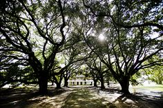 The Plantation Every American Should Visit -- National Geographic -- Whitney Plantation Museum, Louisiana