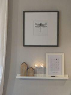 Libelle und Bilderleiste