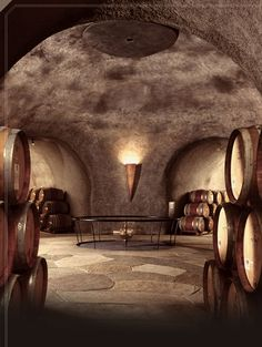 Stag's Leap Wine Cellars | Estate | Art And Architecture,,,the caves