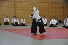 Aikido Lehrgang des Österreichischen Aikidoverbands im Budokan Wels, Mai 2015 - Iriminage
