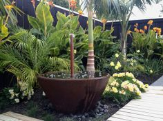 Best Cost-Free Tropical Garden patio Suggestions It's no surprise the reasons . - Best Cost-Free Tropical Garden patio Suggestions It's no surprise the reasons people aim for a tr - Tropical Garden Design, Tropical Landscaping, Landscaping With Rocks, Tropical Plants, Garden Landscaping, Landscaping Ideas, Tropical Gardens, Exotic Plants, Landscaping Software