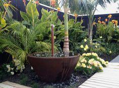 Alstromeria intecancha series, canna, carpet rose, palms, acorus ogon, ligularia, black taro