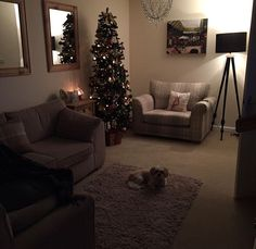 Fall Winter, Autumn, Shag Rug, Living Room Designs, New Homes, Christmas Tree, Exterior, Lounges, Holiday Decor