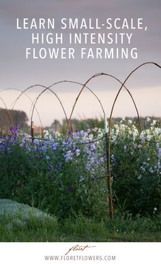 Since 2013, Floret has trained hundreds of aspiring flower farmers and floral designers how to grow specialty cut flowers and build a a thriving flower business on two acres or less. Learn Floret's small-scale high intensity growing techniques via Floret's new Online Workshop.