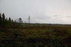 Muonio, Finnish Lapland. Photo by Jani Kärppä. #filmlapland #arcticshooting #finlandlapland
