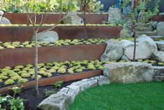 Breathtaking Retaining Wall decorating ideas for Winsome Landscape Contemporary design ideas with boulders garden steps grass planting raised beds steel retaining wall stone border Terraced Landscaping, Landscaping Retaining Walls, Modern Landscaping, Backyard Landscaping, Landscaping Ideas, Landscaping Software, Backyard Ideas, Steel Retaining Wall, Retaining Wall Design
