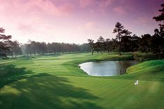 The Tradition Golf Club - This scenic golf course was cut out of dense hardwoods and is located on the beautiful, rolling terrain of North Mecklenburg County . Strategic shot-making is the key to scoring at The Tradition, with its winding, tree-lined fairways.
