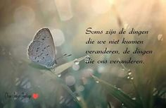 True Quotes, Qoutes, Live Love Life, Dutch Words, Dutch Quotes, True Words, Quotes To Live By, Positive Quotes, Told You So