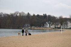 Zusammenarbeit mit dem NABU Schwerin für die Kraniche | Spaziergang am Zippendorfer Strand mit Frau Katja Burmeister – NABU Schwerin (c) Frank Koebsch