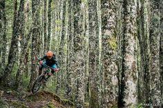 @larsnbars in Craigeburn NZ. #BikeMagPOD by @parisgore. #mtb