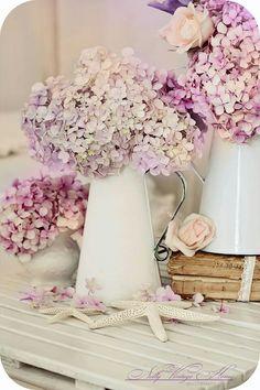 Beautiful pastels ~ hortensia!
