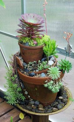 Cute pot nesting idea with succulents.