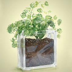 Projects Using Glass Blocks   Glass Block Craft Ideas