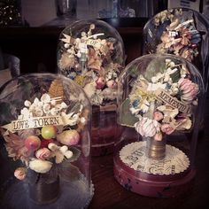 Decorative glass domes by Wendy Addison