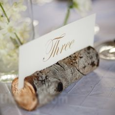 Rustic An Earthy Wedding in Steamboat Springs, CO - Rustic - Reception Photos