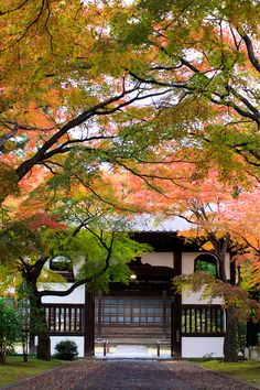 #Japan #sendai