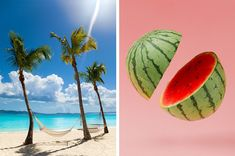 Pick Seven Foods And We'll Reveal Where You Should Go For Spring Break