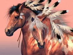 Native American Painted War Horse