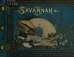 Savanah illustrated, indelible photographs