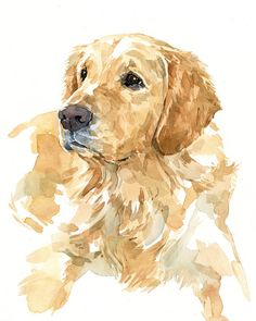 Pet Portrait Custom Original Watercolor 8x10 Lab by studiotuesday