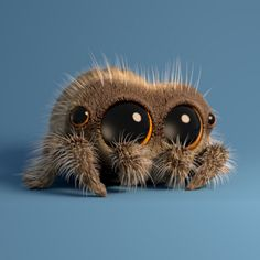 Lucas The Cute Little Spider In 'Musical Spider'