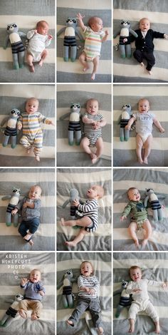 Monthly Baby pictures / Baby's First Year with Stuffed Animal by Kristen Honeycutt Photo Co.