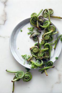 Fiddlehead ferns   Cannelle et Vanille