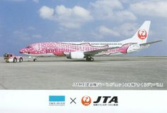 JAL, Japan TransOcean Air B737-400 Postcard