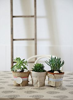 burlap hessian decorating ideas with succulents and coastal stripes abeachcottage.com