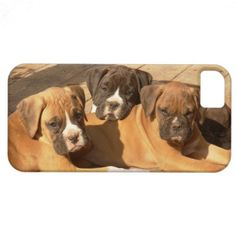 Boxer Puppies Case-Mate iPhone 5 Barely There Universal Case