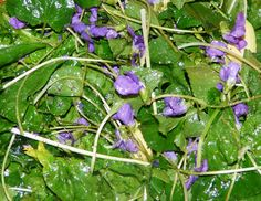 Eatable flower-Violets add to a spring salad by Soup to Nuts Caterers