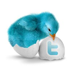 Everything-PR. For Todays Top Public Relations, Marketing and Social Media News. Twitter Tweets, Twitter Tips, Twitter Icon, Business Marketing, Social Media Marketing, Digital Marketing, Online Marketing, Marketing Training, Business News