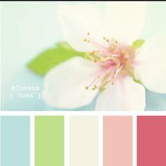 {blossom hues}