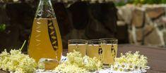 Bezinková limonáda – Uzdravte se jídlem! Lemonade Cocktail, Scd Recipes, Mojito, Paleo, Table Decorations, Med, Punch, Drink, Syrup