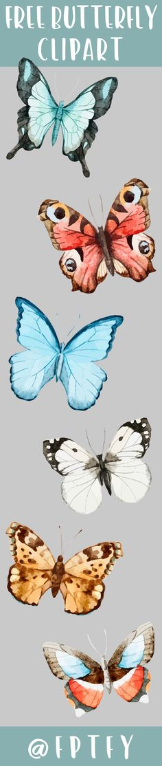 Set of 6 Free Butterfly Clipart Images Commerical Use OK!
