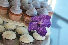 raspberry and honey flower cupcakes the cupcake blog jasmine raspberry ...