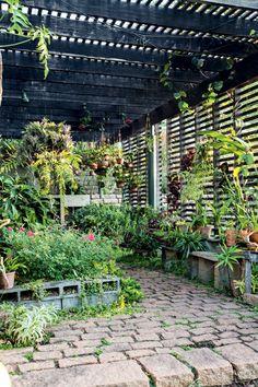 Para acomodar o orquidário e o viveiro de plantas do morador, o paisagista Luciano Fiaschi projetou um pergolado de ipê rústico sustentado por duas vigas de pedra. Os vasos ficam apoiados em blocos de concreto ou pendurados nas ripas de madeira da estrutura, que também deixam a luz natural entrar no espaço. Uma primavera camufla parte da estrutura e a trepadeira congeia faz as vezes de arbusto próximo ao espelho d'água. (Conteúdo de Casa e Jardim)