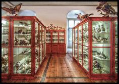 """""""The """"Naturhistorische Museum"""" was set up by the Admont Benedictine Father Gabriel Strobl in the years 1866 to 1910."""" Photo and caption by Ognipensierovo (Flickr)"""