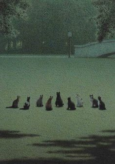 The Gathering postmagest: Michael Sowa